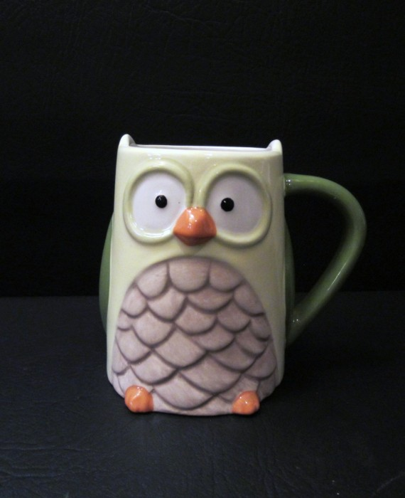 Tag 3D Owl Brown Green Orange Mug 16 oz FUN